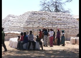 FRA will buy maize at K65 for a 50kg bag