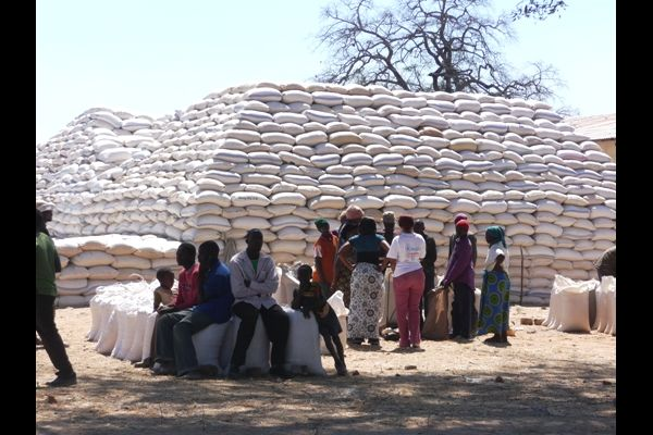 Stacks of maize at an FRA Holding Deport