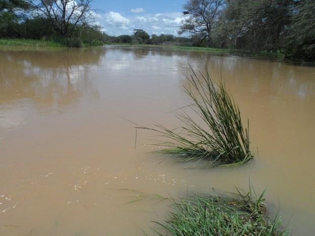 Kazungula floods