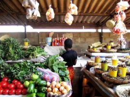 Zambia's Consumer Price Index fall by 5 per cent – JCTR