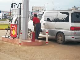 File: Mount Meru fuel service station