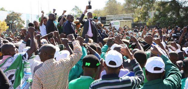 Zambian Eye image