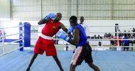 Muziyo, knocks out Malawian boxer