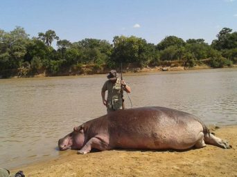 Born Free pleads with Lungu to spare the lives of 2,000 hippos