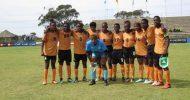 Cameroon dash Shepolopolo's Cosafa hopes