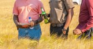 Zambian Breweries agro-processing benefits local farmers