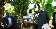 Lungu launches cooperative