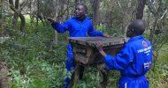 Zambian entrepreneur wins climate change adaptation award